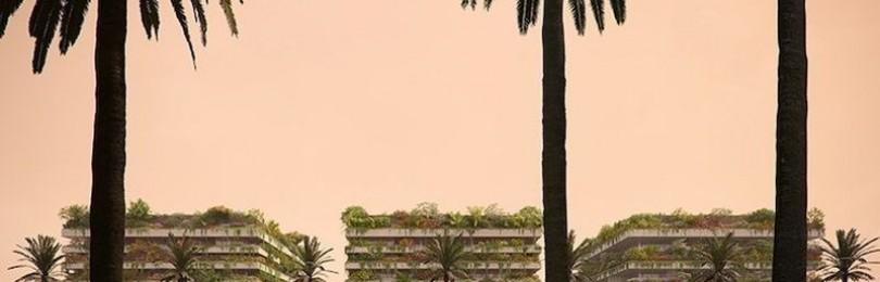 Проект будущего – вертикальный «жилой лес» в Египте
