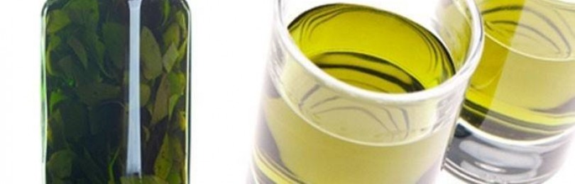 Водка на плодах, травах и специях: 18 рецептов в домашних условиях