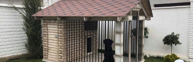 Оригинальные вольеры для собак (подборка фото)