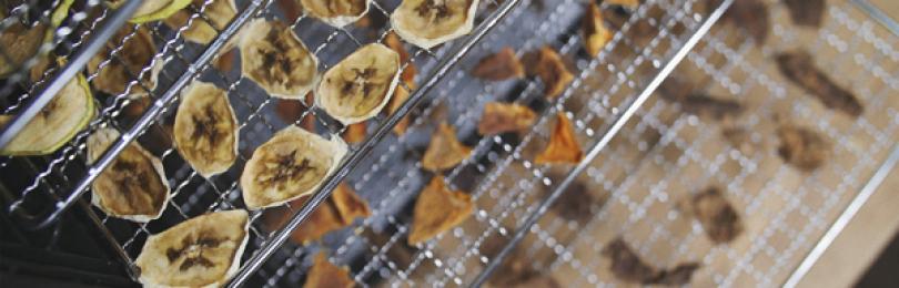Обзор лучших дегидраторов для овощей и фруктов 2020 года