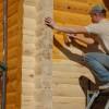 От плесени и жучков: 7 способов защитить деревянный дом