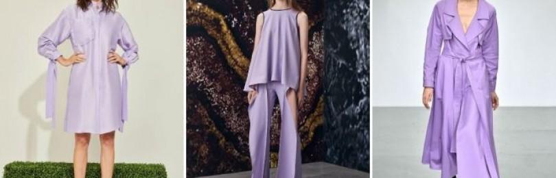 Темно-фиолетовый цвет и сочетание с ним
