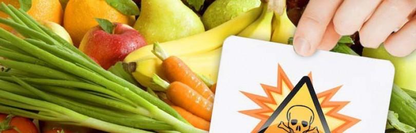 Сушилка для овощей и фруктов отзывы