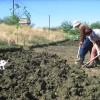 Как часто нужно перекапывать землю в огороде?