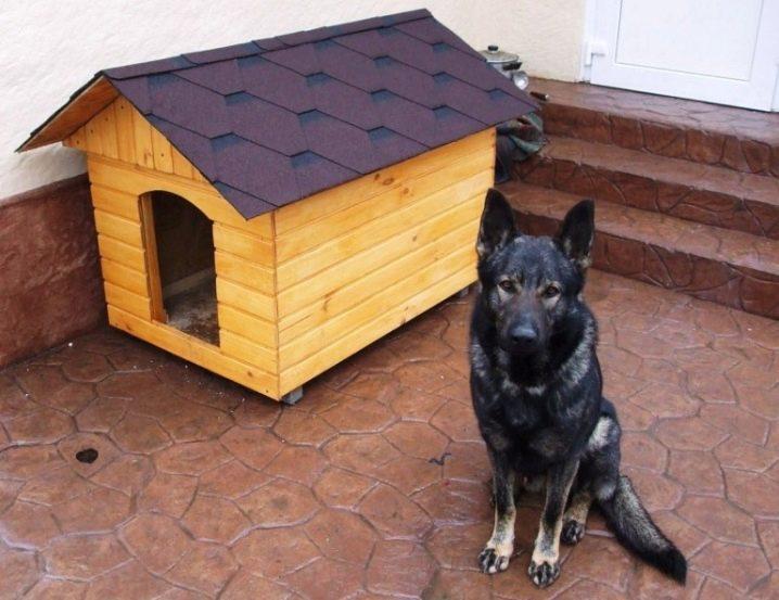 будка для крупной собаки