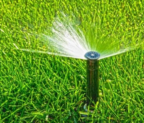 Полив газона: система полива, форсунки и другое оборудование. как часто нужно поливать газонную траву? насадки-распылители и норма полива на 1 м2