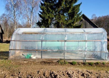 Как использовать теплицу на даче максимально эффективно?