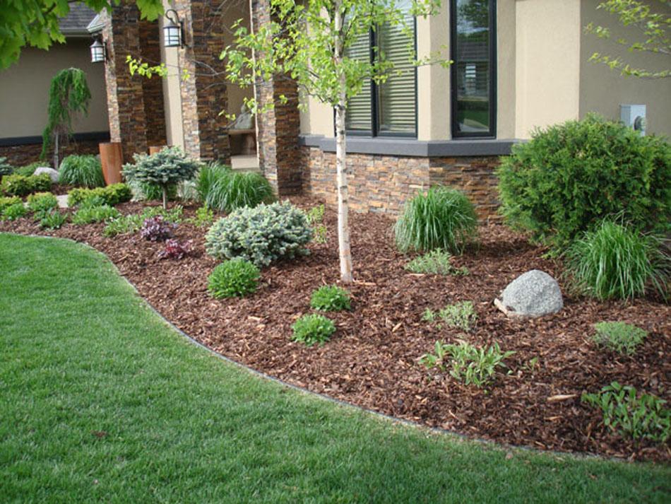 Мульчирование почвы: польза, способы, материалы