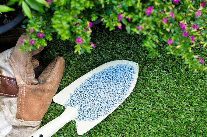 Калийные минеральные удобрения: что такое, применение, использование осенью