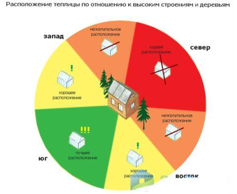 Как использовать теплицу на даче максимально эффективно? какие культуры можно сажать вместе? зонирование. — ботаничка.ru