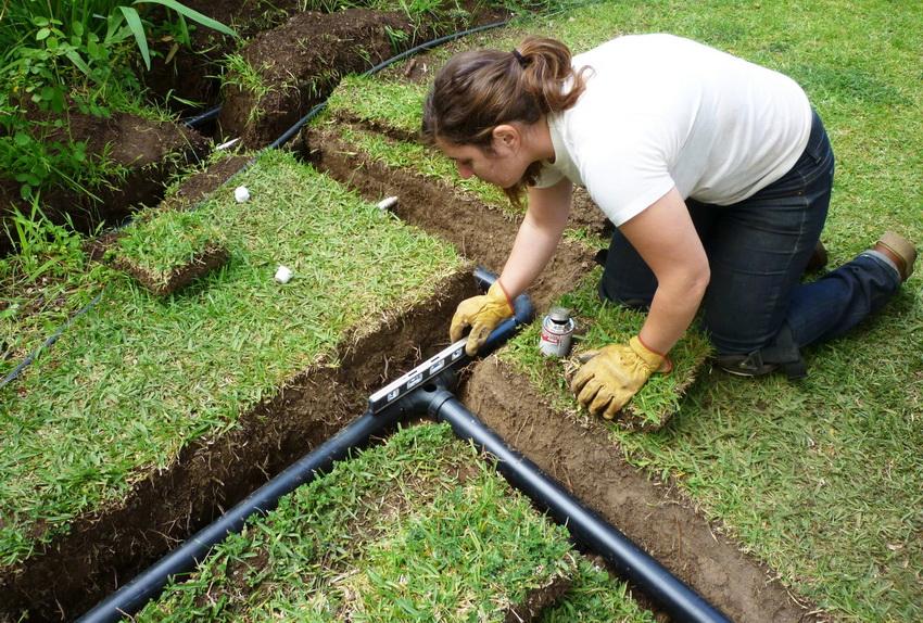 Об автополиве газона: особенности системы автоматического полива газонной травы