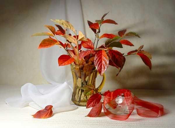 Поделки из листьев: удивительные изделия быстро и просто