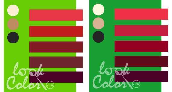Бело-зеленый цвет и сочетание с ним | lookcolor