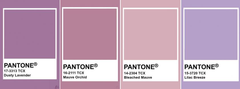 Серо-фиолетовый цвет и его сочетание | lookcolor