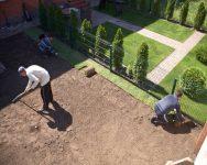 Сделать на даче газоны своими руками – просто, доступно и красиво
