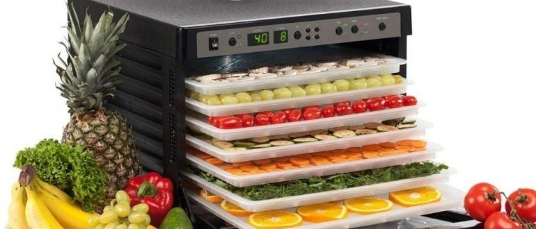 дегидратор для овощей и фруктов