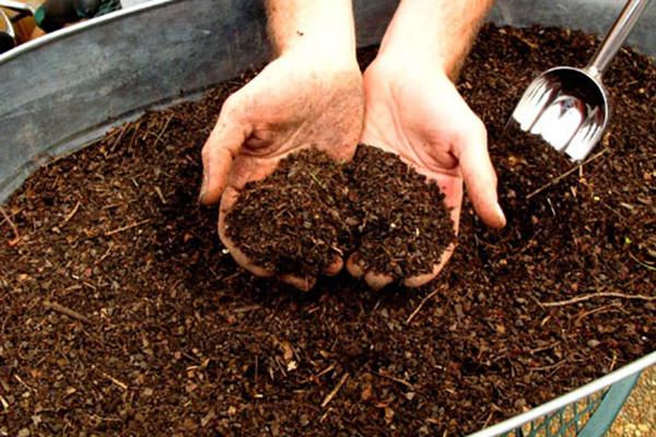 Переработка пищевых отходов в удобрения: как сделать органический компост дома на кухне и на даче, что можно класть в него, правила и нюансы компостирования