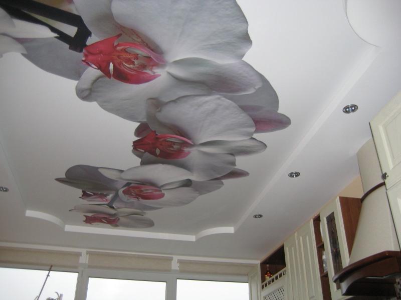 Фотопечать на натяжных потолках на кухне – фото интерьеров