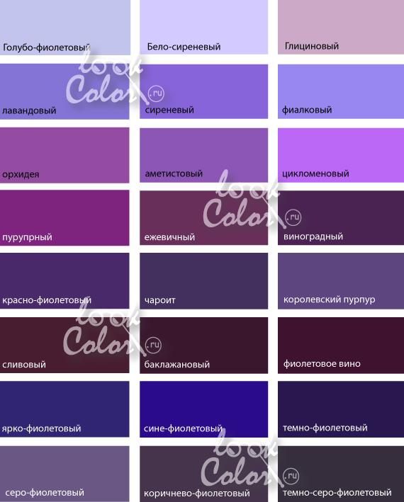 светло фиолетовый цвет