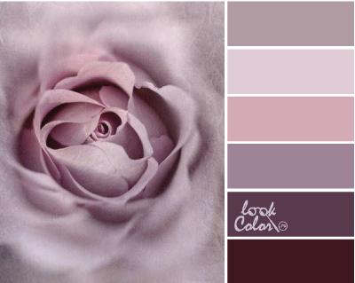 серо лиловый цвет