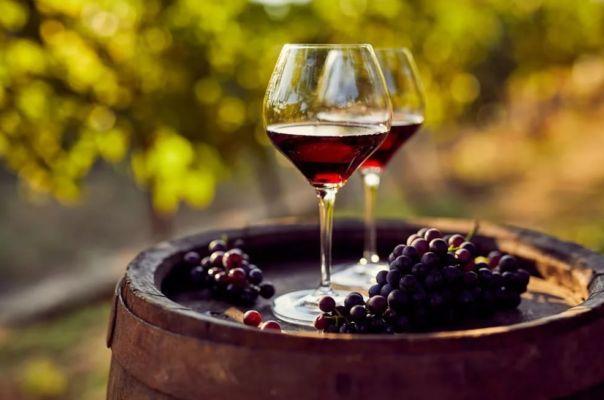 Домашнее вино из винограда - как приготовить в домашних условиях по простым рецептам с фото