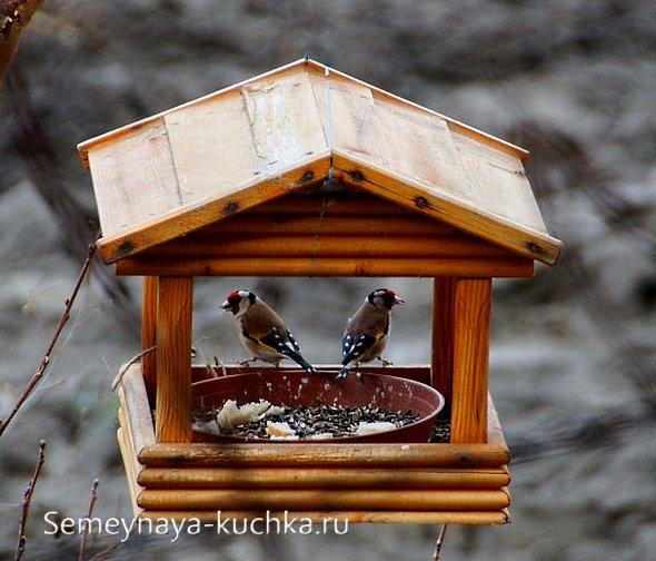 Кормушка для птиц своими руками (64 фото): как сделать зимнюю новогоднюю кормушку? размеры и простые чертежи, шаблоны и схемы изготовления