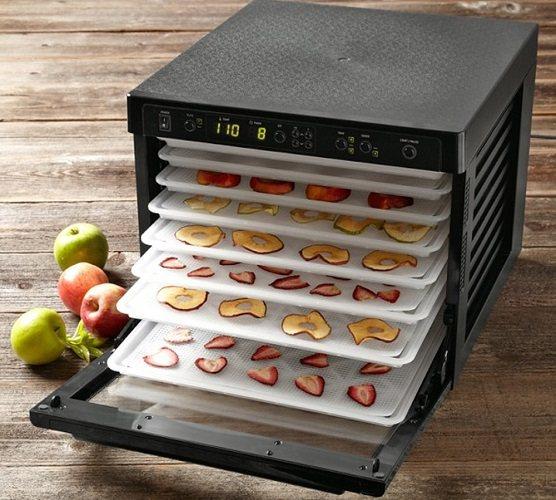 Как выбрать сушилку для фруктов, овощей, грибов и ягод (дегидратор) за 7 шагов