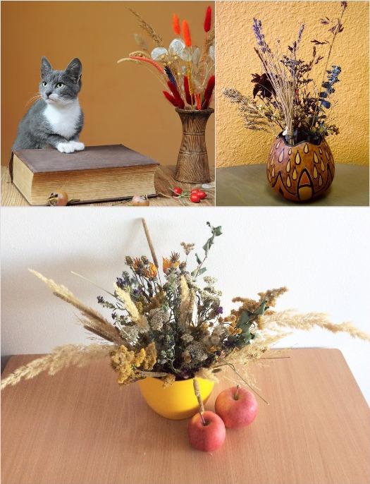 сухие цветы для декора
