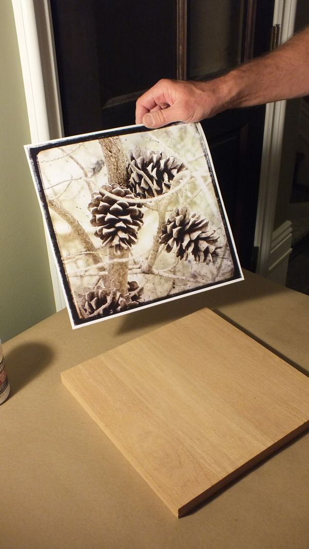 Перенос фотографии на дерево