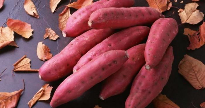 Батат —что это за овощ? какой на вкус и как правильно готовить?