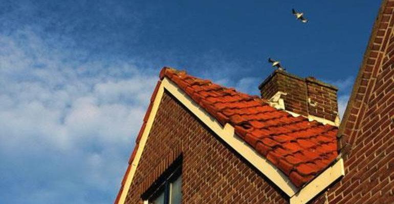 Сонник: крыша