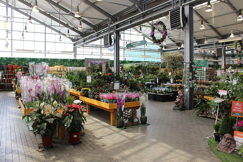 дарвин садовый центр симферопольское шоссе каталог цены