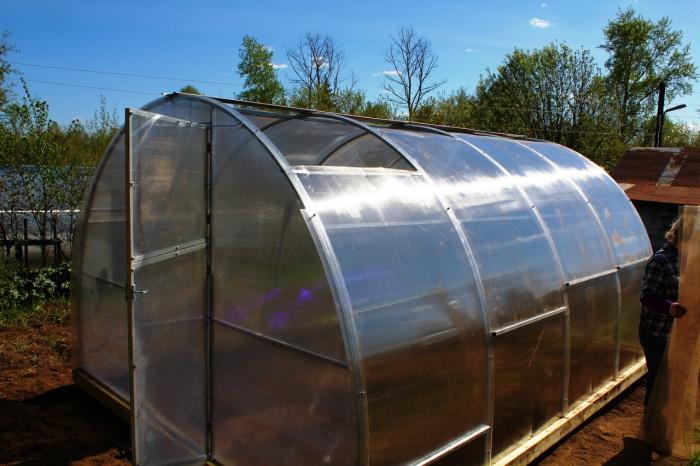 Теплицы «тюльпан»: модели с открывающимися боками и сдвижной крышей