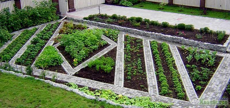 Огород на дачном участке — пошаговая инструкция как разбить правильно огород (130 фото)
