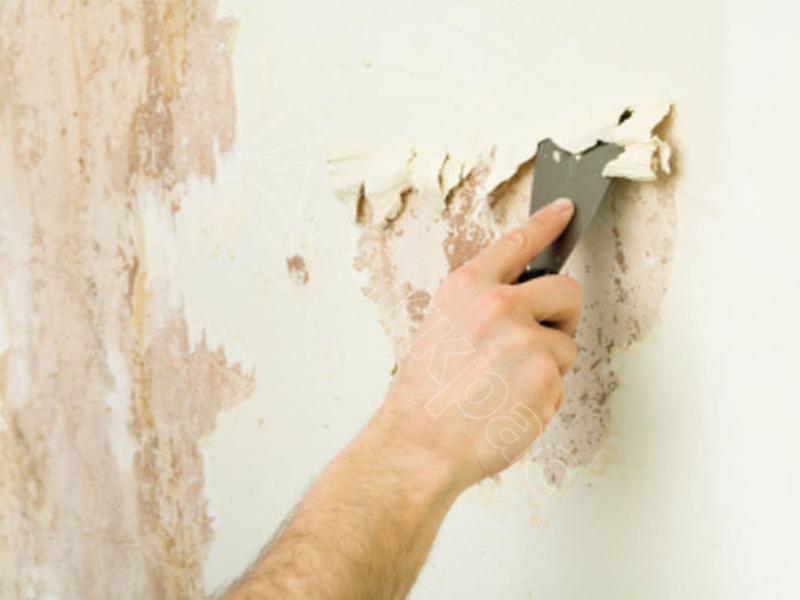 Как снять старую краску со стен как снять старую краску со стен