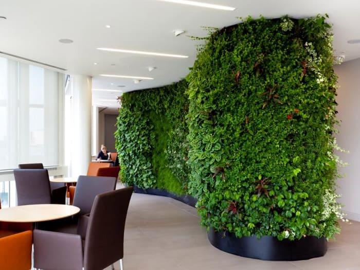 Великая зелёная стена