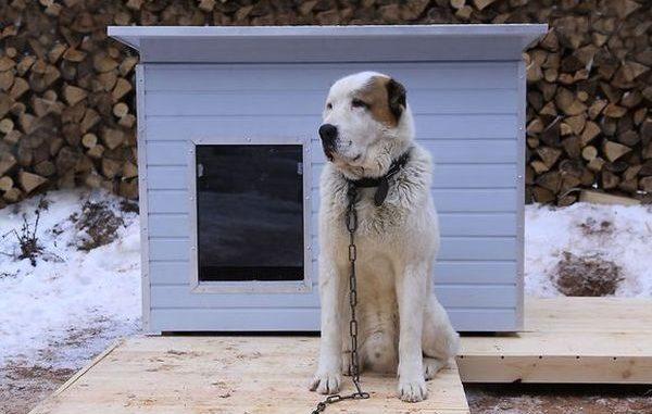 как сделать будку для собаки из досок
