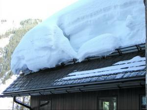 Разновидности и особенности снегозадержателей