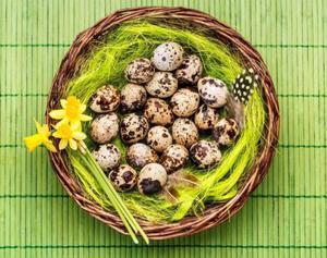 Польза и вред перепелиных яиц для мужчин, как правильно принимать их для потенции