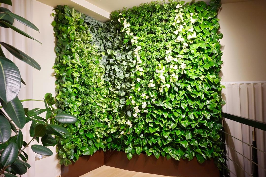 Стена из растений в квартире своими руками
