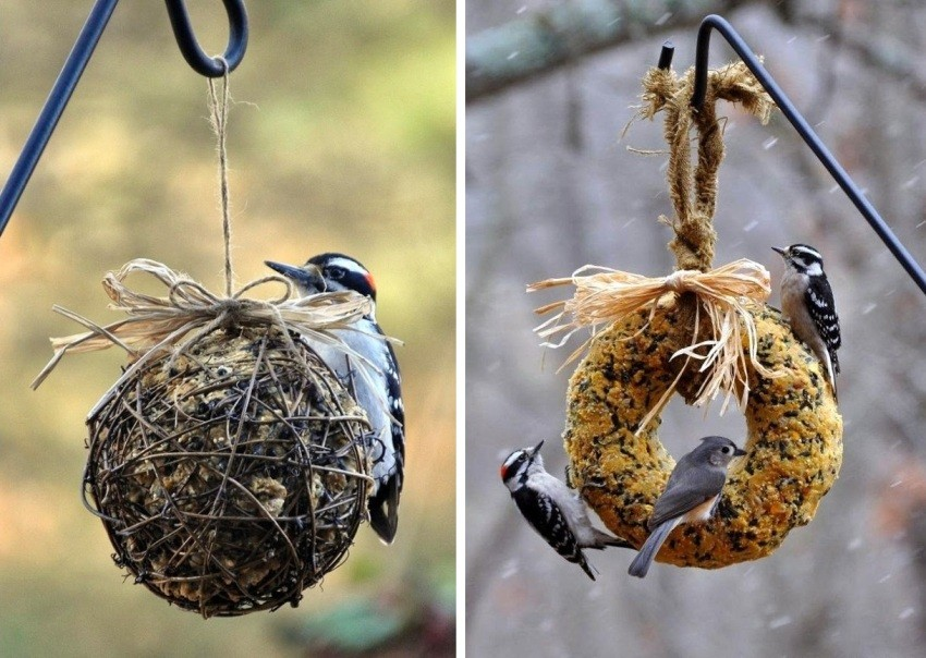 кормушка для птиц своими руками фото