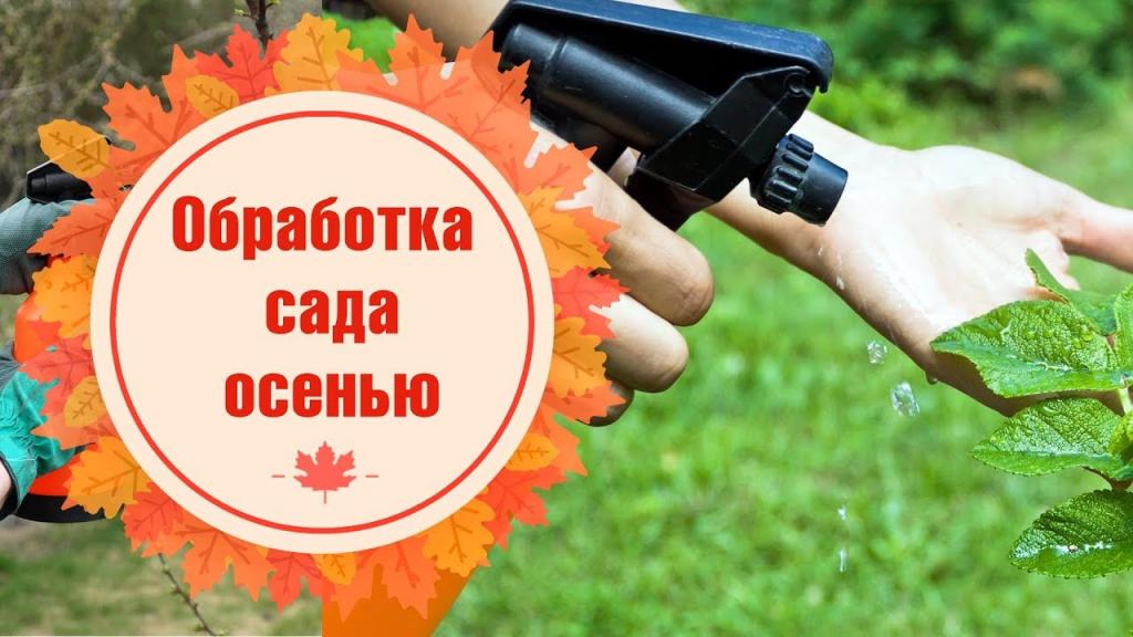 чем обработать деревья осенью в октябре