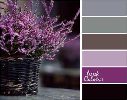 Теплый и холодный фиолетовый цвет