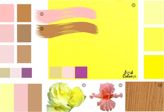 цветовая палитра сочетание цветов