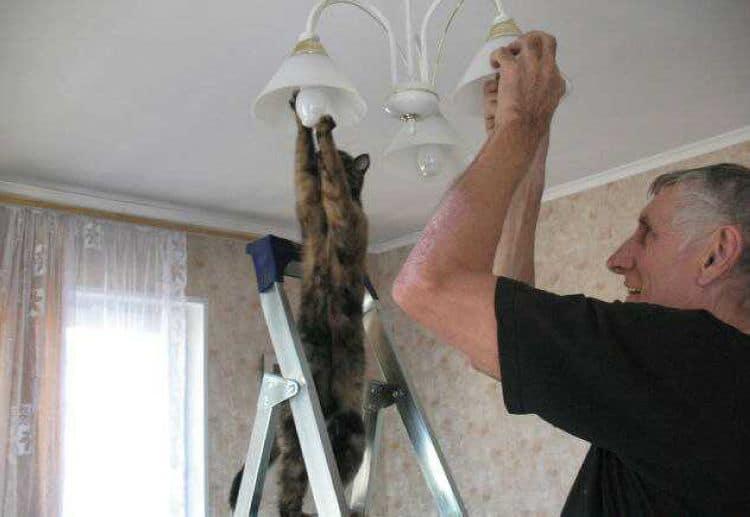 Почему мигает свет в квартире: причины и способы устранения