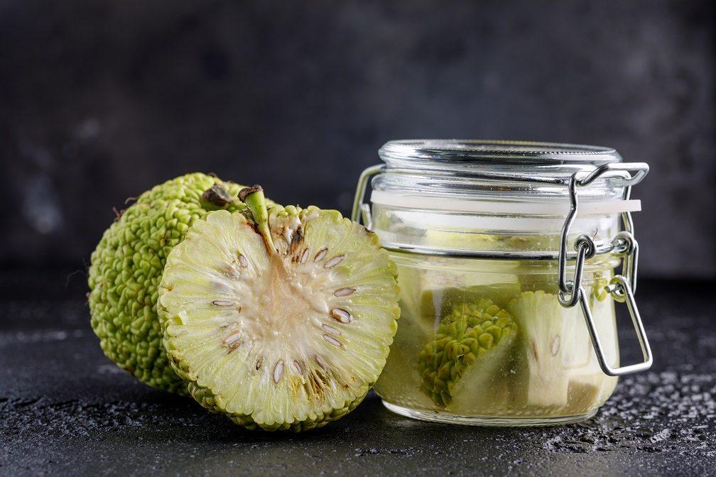 Рецепты и способы приготовления настоек адамова яблока, правила применения для лечения больных суставов