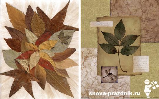 картинки из листьев для детей