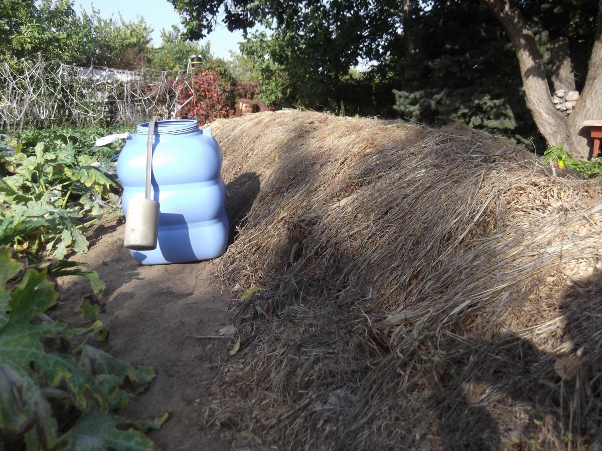 Простые методы ускорения созревания компоста для дачных участков