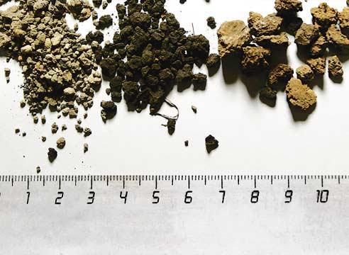 Обзор типов почв