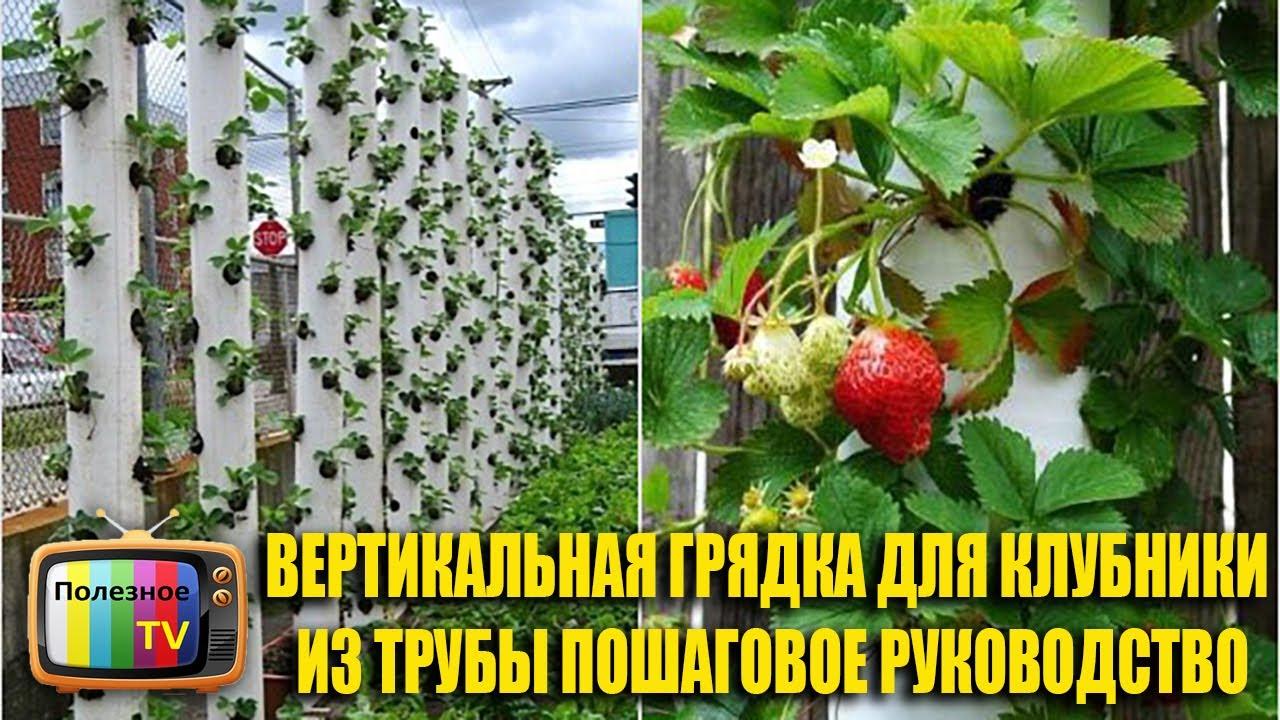 Грядки из пластиковых панелей: высокие ограждения из пвх-доски на даче. как сделать бортики из пластика своими руками для огорода?